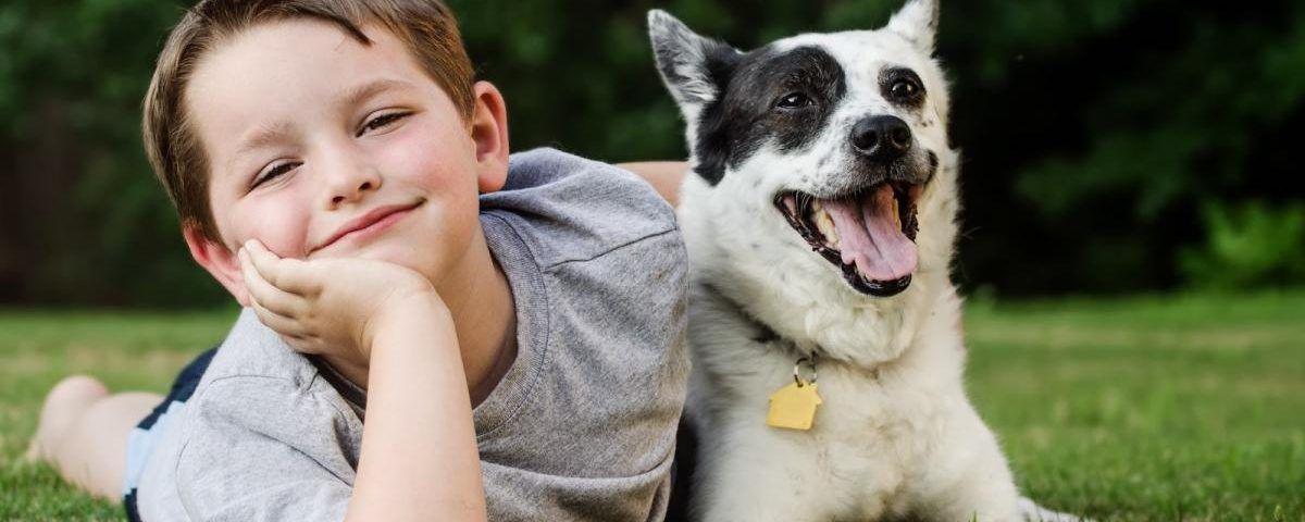 Как избежать укуса собаки